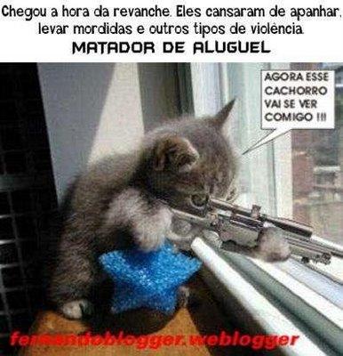 matador de aluguel