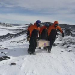 salvação da antártida
