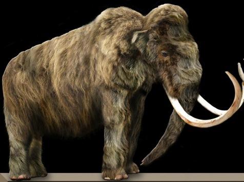 animais do passado