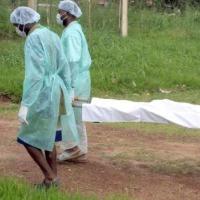 Epidemia Viral